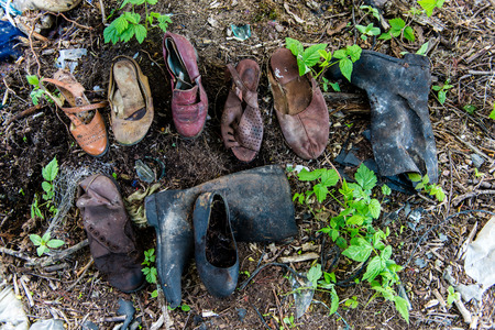 old shoes in the dumpster in forest