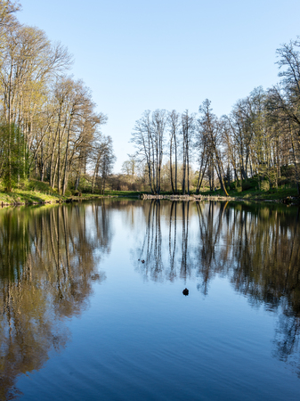 scenic and beautiful reflections of trees and clouds in water of the river Stock Photo