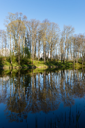 flood area: scenic and beautiful reflections of trees and clouds in water of the river Stock Photo