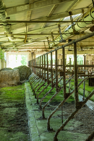abandoned country farm building in bright summer sun in latvia Stock Photo
