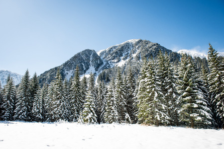 Beautiful landscape view of Western carpathian, Tatry mountains in winter