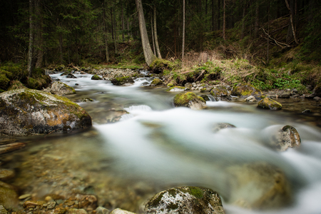mountain river, long exposure, with rocks and trees Stock Photo