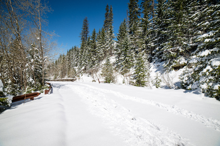 sunny tourist hiking track in winter snow, in western carpathian, tatry mountains Stock Photo