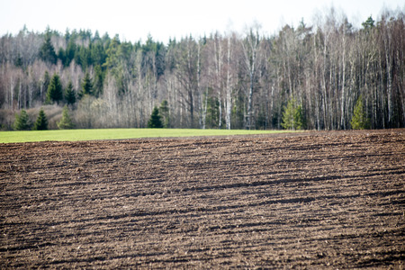 Cultivated field in early spring day in countryside Reklamní fotografie
