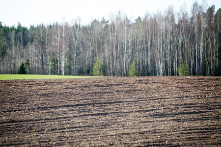 Cultivated field in early spring day in countryside Stock Photo