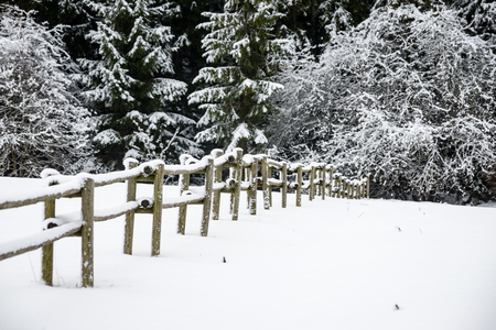 cold winter field in mist with snow covered wooden fence