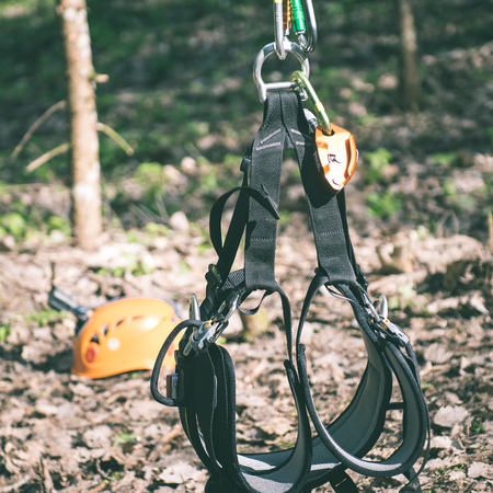 mountings: tree climbing equipment in forest with slacklines and mountings - instant vintage square photo