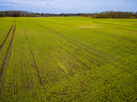 drone image. aerial view of rural area with freshly green fields, country roads and tractor tracks Stock Photo