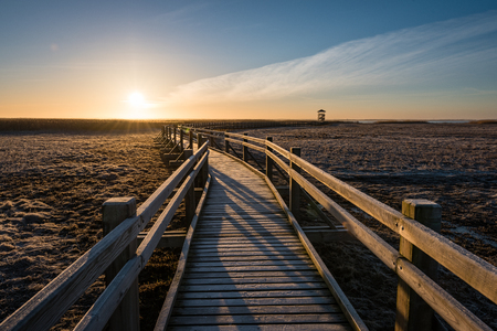 wooden boardwalk with bird watch tower in early morning with colorful sunrise in Liepaja, Latvia