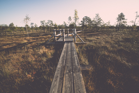 morass: wooden footpath on the bog with autumn colored flora. Vintage effect. Stock Photo