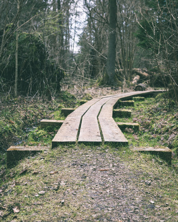 wooden footbridge in the bog in the countryside surrounded by forest - vintage green look Stock Photo