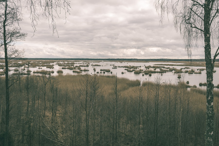 boardwalk trail: spring swamp view with lakes and forest trees - vintage film effect