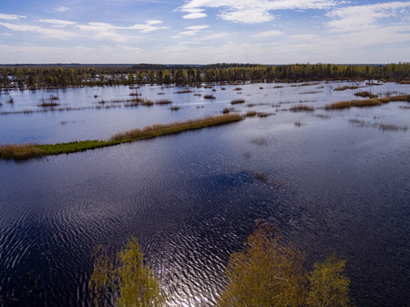 cleared: drone image. aerial view of rural area with swamp lakes with blue water