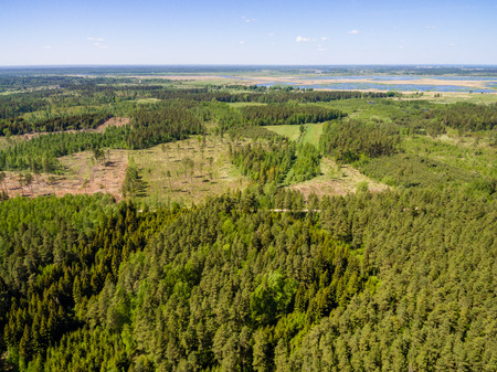 cleared: drone image. aerial view of rural area with forest and swamp lake in sunny summer day