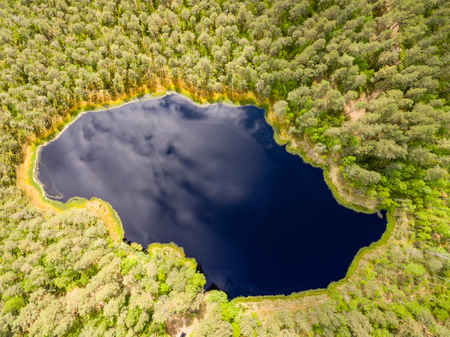 cleared: drone image. aerial view of rural area with blue lake and forest in sunny summer day