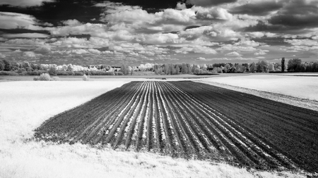 countryside fields and contrat clouds above in summer. infrared image