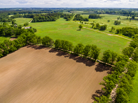 cleared: drone image. aerial view of rural area with freshly cultivated fields. green and brown. summer