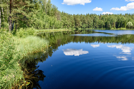 midday: White clouds on the blue sky over forest lake with reflections Stock Photo