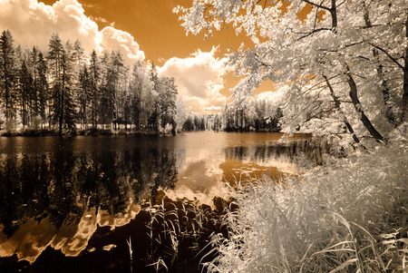 reflections in the lake in countryside summer. infrared image Stock Photo