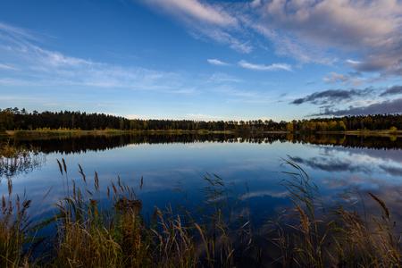 秋に彩られた白い雲の上で水に光が反射して湖の岸に木々。広角風景