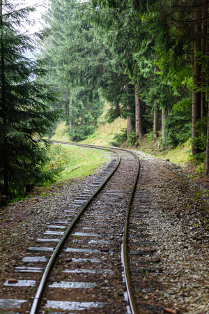 wavy railroad tracks in wet summer day in forest with green meadow on horizon