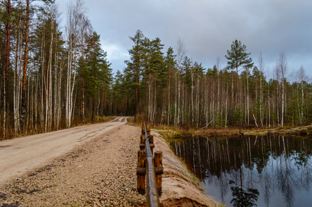 empty gravel road in the countryside with trees in surrounding. perspective in summer colors