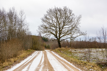 empty road in the countryside with trees in surrounding. perspective in winter gravel surface in latvia Stock Photo