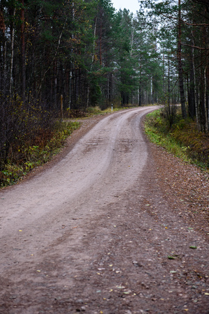 empty forest road in the countryside with trees in surrounding. perspective in autumn. gravel surface in latvia Stock Photo