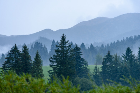 western carpathian mountain tops in  autumn covered in mist or clouds. panoramic view from a distance. autumn colored forests Stock Photo
