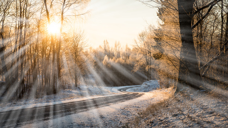 empty road in the countryside with trees in surrounding. perspective in winter - light rays effect