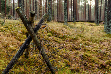 old wooden trenshes in Latvia. reconstruction of first world war. Lozmetejkalns