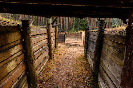 old wooden trenshes in Latvia. reconstruction of first world war. Lozmetejkalns