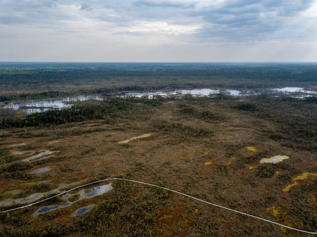 drone image. aerial view of swamp lake in cloudy spring day. latvia