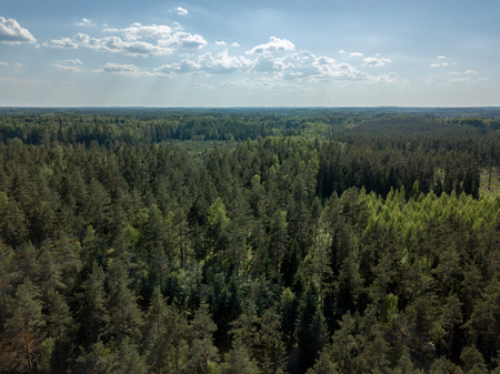 drone image. aerial view of rural area with fields and forests in cloudy spring day. latvia