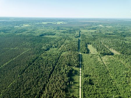drone image. gravel road surrounded by pine forest from above. summer countryside in Latvia Banco de Imagens