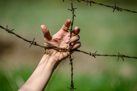 womans Hand clutch at barbed wire fence on green background Stock Photo