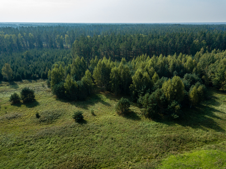 drone image. aerial view of rural area with fields and forests. textured background. sunny autumn day in latvia