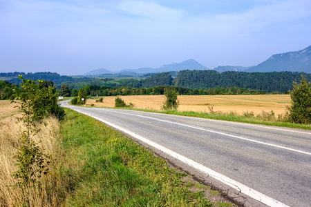 asphalted road leading up to the mountains in forest. summer time in slovakia, wavy lines and perspective