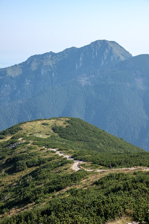 hiking trail on top of the mountain. Tatra, Slovakia. Western carpathian mountains in early autumn colors with clean air. Tourist track