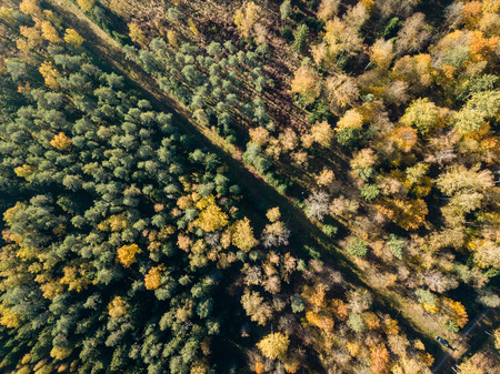 drone image. aerial view of rural area with fields and forests in cloudy autumn day with yellow colored fall trees