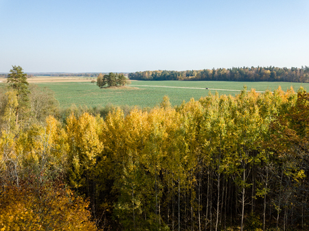drone image. aerial view of rural area with fields and forests in cloudy autumn day with yellow colored fall trees day. latvia Stock Photo