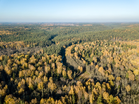 drone image. aerial view of wavy river in autumn colored forest. latvia, river of gauja Stock Photo
