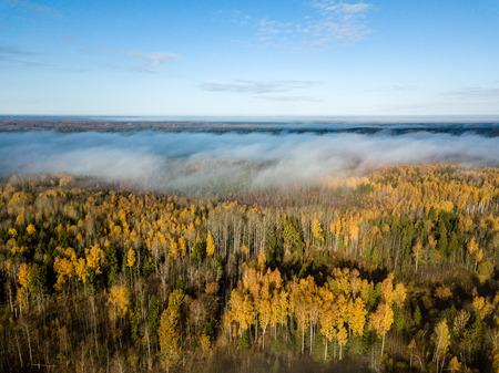 drone image. aerial view of rural area with fields and forests covered in autumn mist. latvia Stock Photo