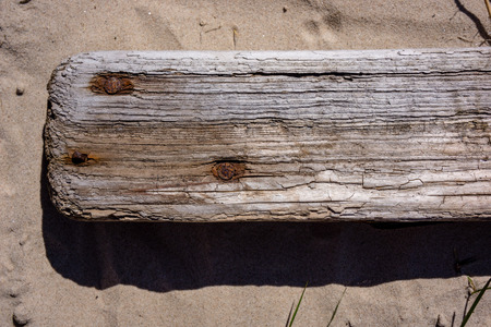 old wooden plank texture in direct sunlight with cracks
