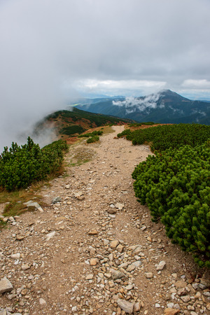 walking above clouds in slovakian Tatra mountains. marked tourist trails with rocks in misty autumn morning Stock Photo