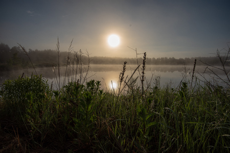 misty morning by the lake with blue sky, wet grass and mist reflections on calm water
