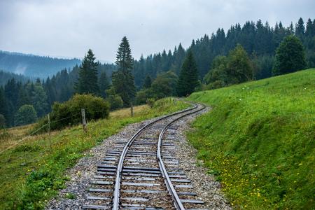 wavy log railway tracks in wet green forest with fresh meadows in slovakia Orava Foto de archivo - 116588973