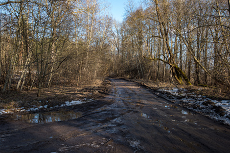 empty country gravel road with mud puddles and bumps. dirty road surface with sand and small stones