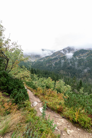 tourist trails in Slovakia Tatra mountains in autumn. cloudy day scenery over mountain tops with mist and clouds