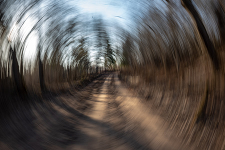 lens motion blur natural in nature background. autumn colors abstract